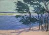 """Bakker Gallery Exhibit """"Windblown Trees"""""""