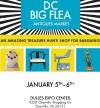 DC Big Flea Antiques Market