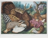 Lark Mason's Sale of Currier & Ives and Other Prints