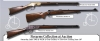 ROAN Inc. Firearms Collection at Auction
