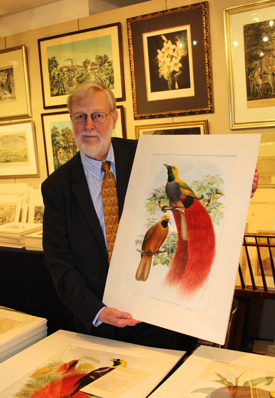 Philadelphia Print Shop proprietor Don Cresswell brought hand-colored lithographs by the noted ornithologist John Gould (1804–1881).<br>Pictured are Birds of Paradise.
