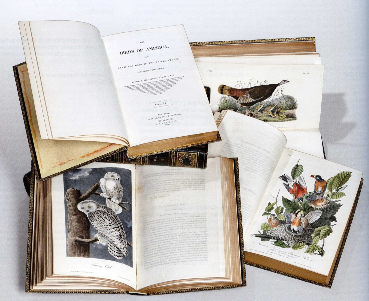 A first edition, seven-volume octavo set of John James Audubon's Birds of North America, with 500 colored lithographs, realized $46,125.     —Skinner
