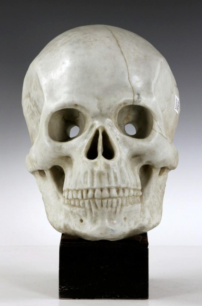 Kaminski skull