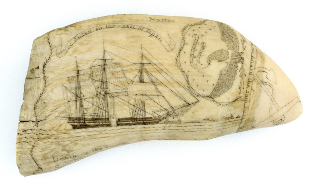 "Considered by many to be the ""holy grail"" of scrimshaw collecting, only about 32 teeth (some say 37) were engraved by Frederick Myrick while on board the Nantucket whaleship Susan. This one has active whaling scenes on both sides and titles that identify the scenes. It was dated 1829 and sold to a bidder in the room for $120,000. Susan's teeth are described in several books on scrimshaw. Myrick does not appear to have produced any scrimshaw other than that done on this voyage."