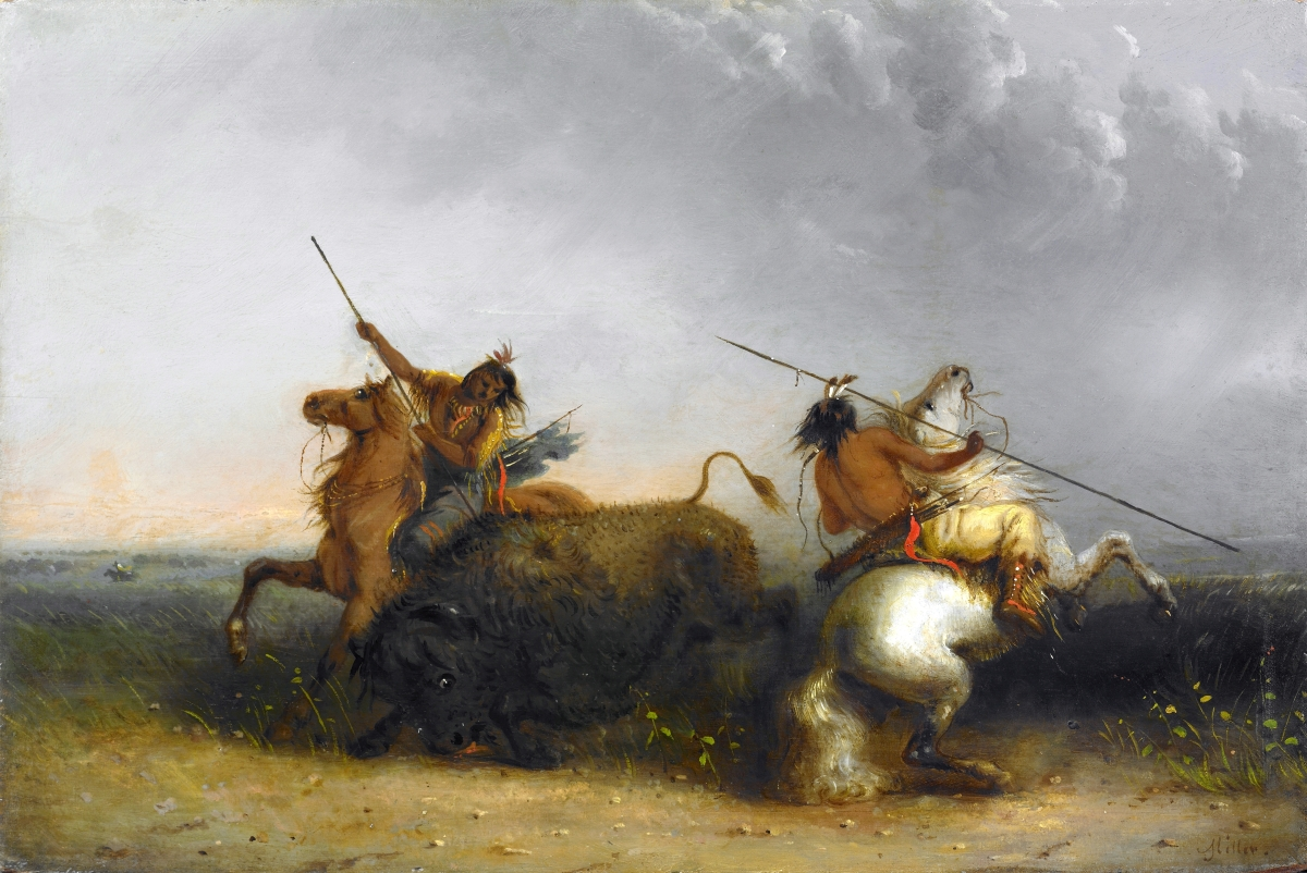"Miller was an early innovator of what would become a popular theme in American art, the Great Plains brave spearing a buffalo. It was a subject also depicted by Albert Bierstadt and Felix Octavius Carr Darley, among others. Darley's composition even appeared on an 1860 bank note. ""Buffalo Hunt"" by Alfred Jacob Miller, circa 1838–42. Oil on wood panel. Amon Carter Museum of American Art."