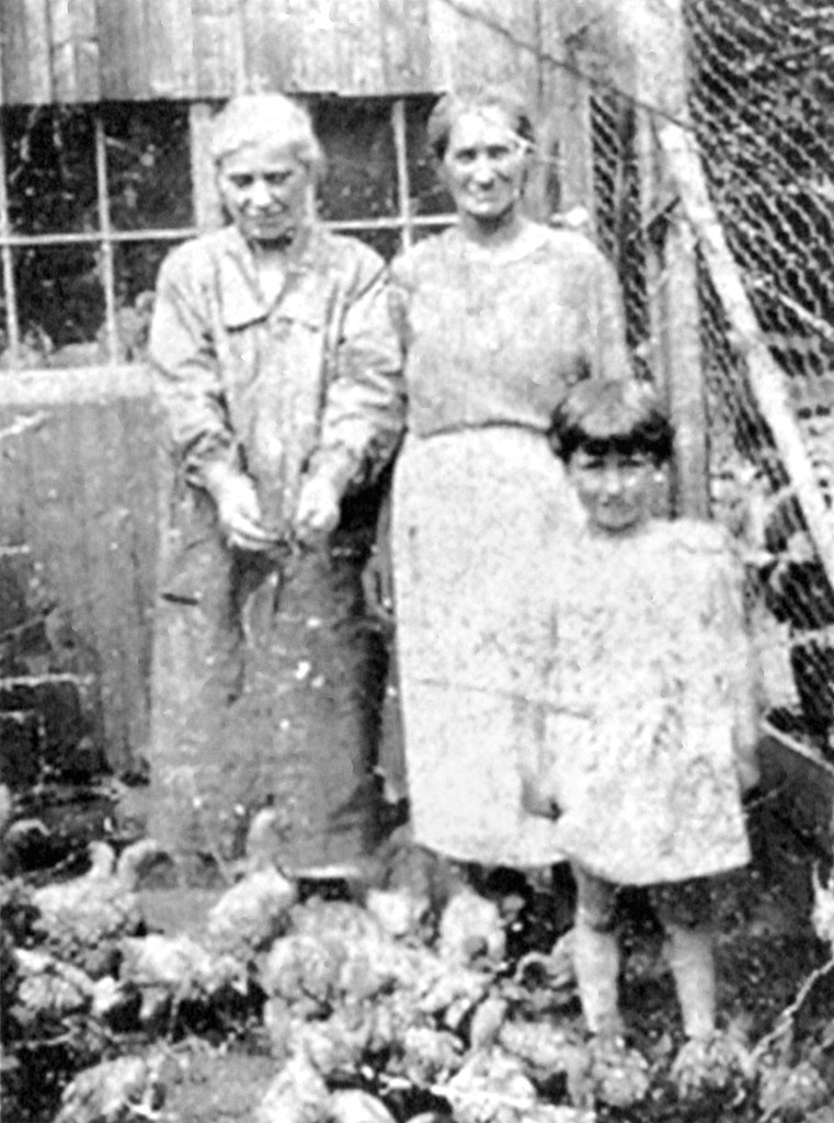 Steve German's great-grandmother, Clara Weintraub, is at right in this photograph taken around 1927. The little girl at her side is Steve's mother, Sylvia Linder. Peeking through the chicken wire is Sylvia's twin, Rose, and her cousin, Eddie Moskowitz, whose mother is at left. Like almost everybody else in Montville, the village in the town of Sandisfield, the family raised chickens and sold eggs.