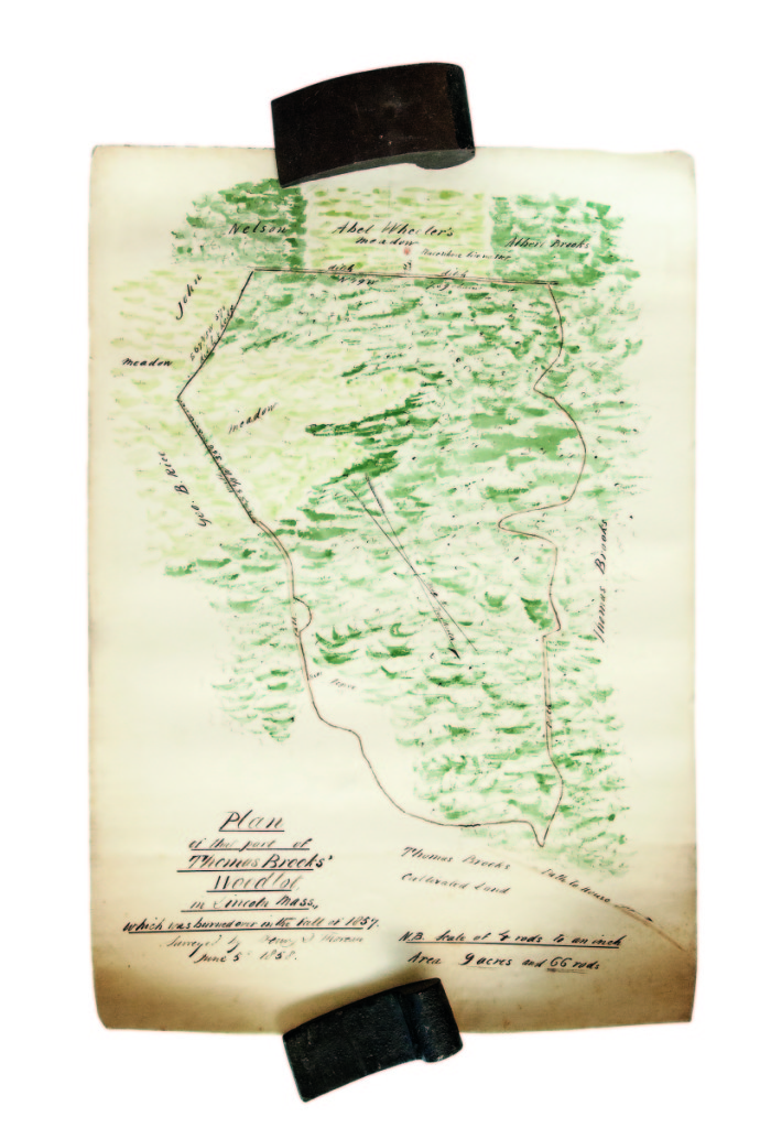 Henry David Thoreau supported himself through much of his life as a land surveyor, and copies of several of his manuscript surveys are in public collections in Concord, Mass. Few used color. One of three in this sale did. It was a survey of part of a woodlot in Lincoln, Mass., that burned in 1857. It showed fences, stonewalls, etc, and it realized $28,290.                   —Skinner's Book Sale