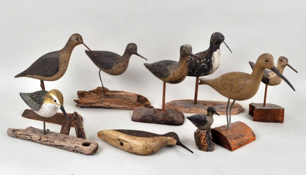 AB Schwenke Shore Birds