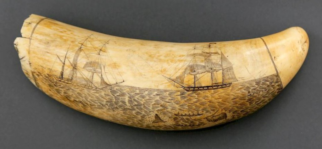 The highest lot in the sale was this engraved tooth by William Lewis Roderick, which brought $75,640. Roderick was a Welsh physician who served as a ship's surgeon on three London South Sea whaling voyages aboard the Adventure, all between 1847-56, when this tooth is believed to have been carved. Note the delicate detail to the choppy water and the sails on the barks.