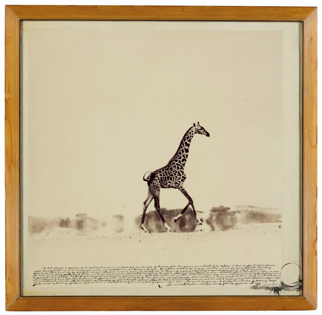 2019_NYR_17322_1069_000(peter_beard_running_giraffe_1960)