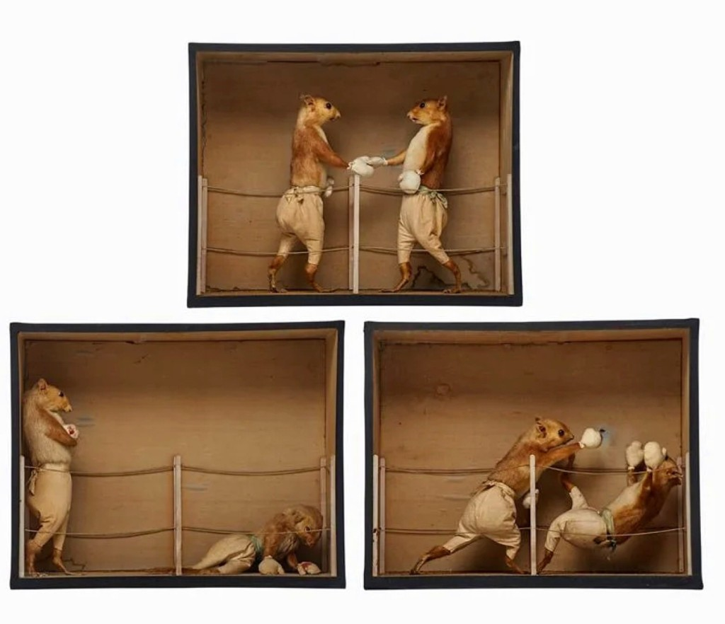 "A group of three sequential display boxes by second-generation English taxidermy artist Edward Hart (1847-1928) were found desirable as they finished at $17,500. The ""Prize Fight"" series depicted two taxidermied squirrels as Victorian or Edwardian boxers."