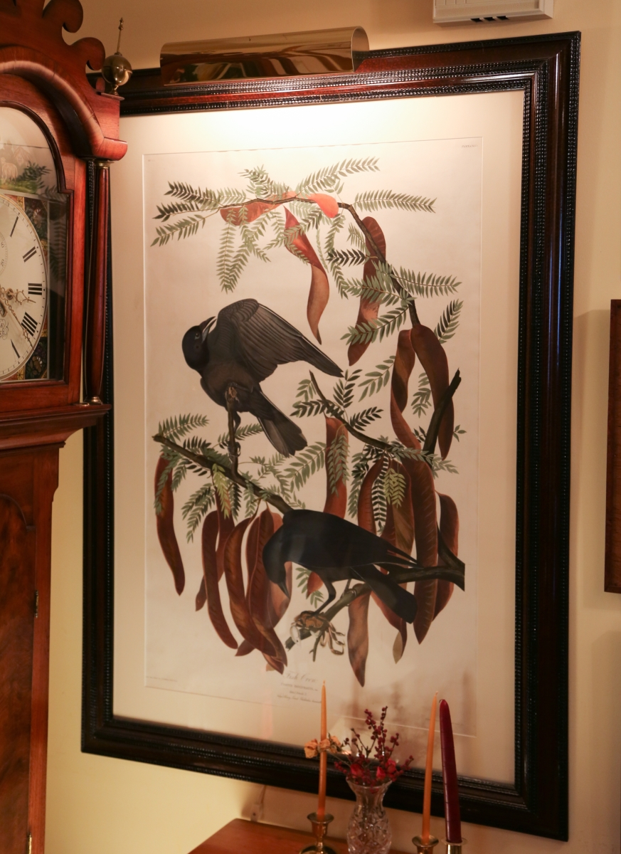 """""""Fish Crow"""" by John James Audubon, from The Birds of America."""