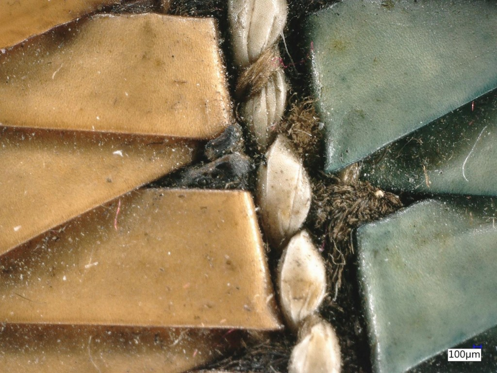 Detail of a moccasin made by a Huron-Wendat artist in the Lake Ontario region of North America more than 200 years ago.