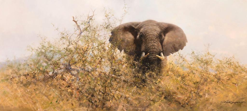 2-ab_dumouchelles_elephant_jan_28-29