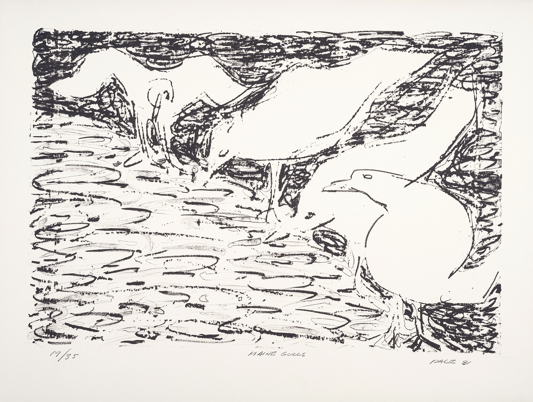 """""""Maine Gulls"""" by Steven Pace. Lithograph on paper. Fairfield University Art Museum, gift of the Stephen and Palmina Pace Foundation."""