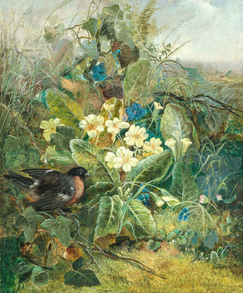 """Fidelia Bridges (American, 1834-1923), """"Rose Breasted Grosbeak in a Thicket,"""" oil on canvas, signed, 18 by 14 inches, fetched $80,000."""