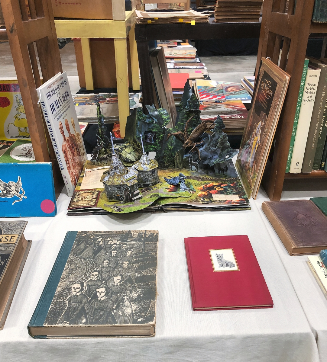The Book Augur, Newburyport, Mass., brought a selection of local history titles, along with books on architecture. He also had a Harry Potter pop-up.