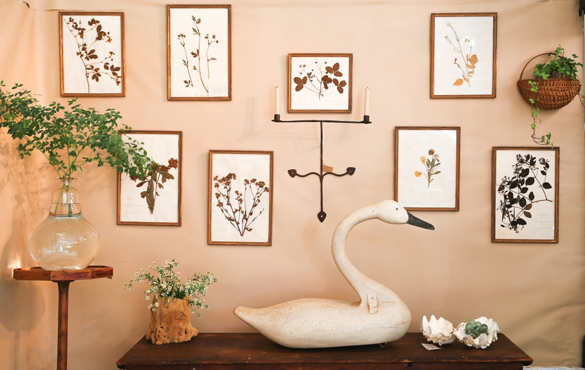 Colette Donovan, Merrimacport, Mass., styled this wall with nature. A set of herbariums with hand stitched foliage from the mid-Nineteenth Century can be seen along the back. The swan in front was once in the collection of the Refuge Waterfowl Museum on Chincoteague Island, which closed in 2013. Donovan believed the swan dated to the 1940s.